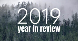small business marketing consultant year in review