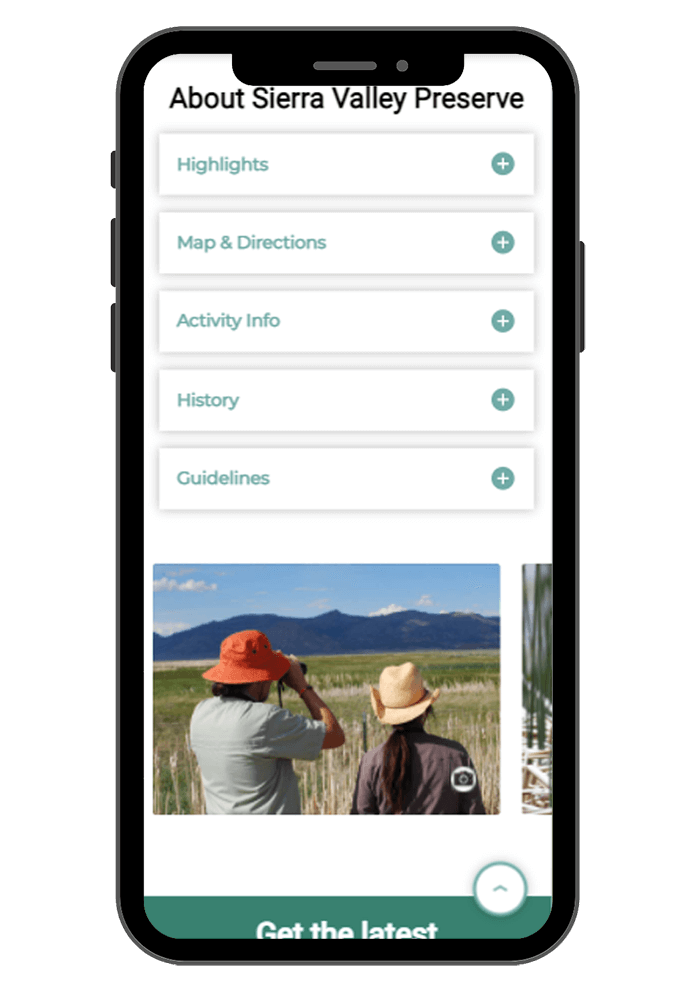 sample responsive design on mobile